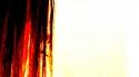 Rohan Quine - The Imagination Thief - still 221