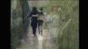 Rohan Quine - The Imagination Thief - still 519