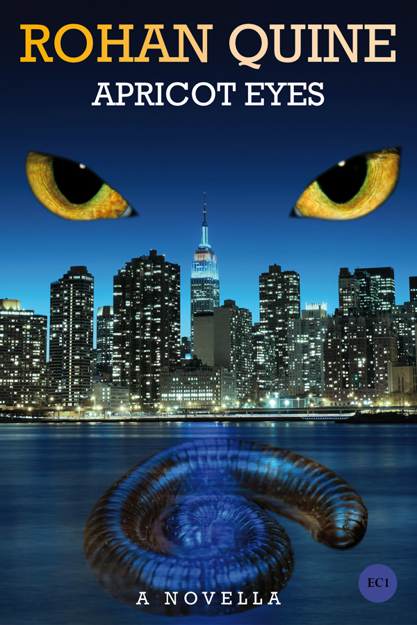 APRICOT EYES by Rohan Quine (novella) - ebook cover (literary fiction, magical realism, horror)