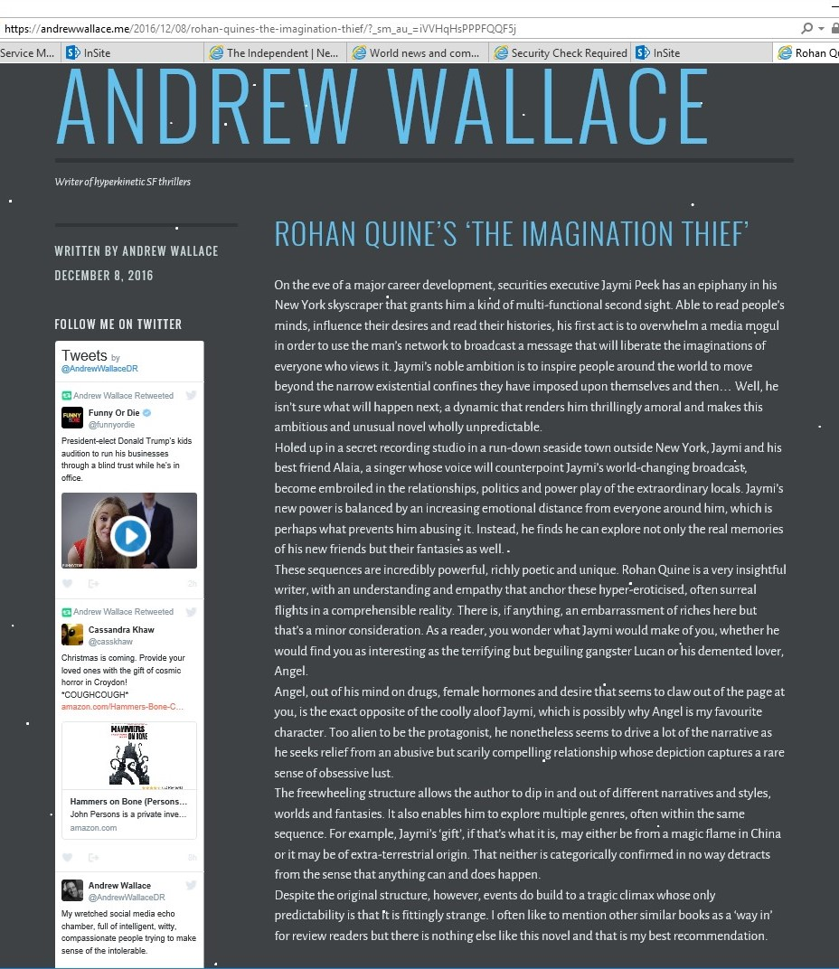 "Review by Andrew Wallace, of Rohan Quine's ""The Imagination Thief"""