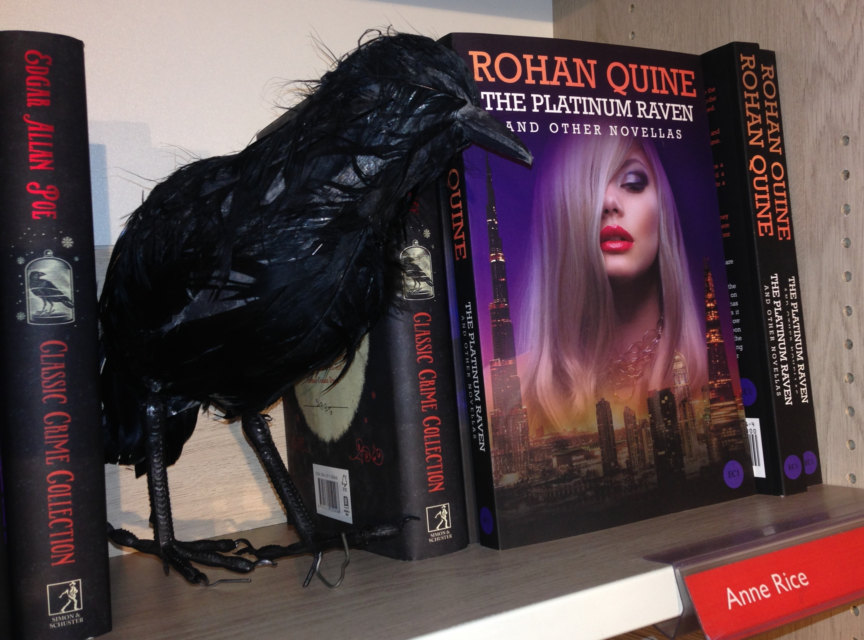 "Poe's raven and Quine's ""The Platinum Raven and other novellas"" in Foyles"