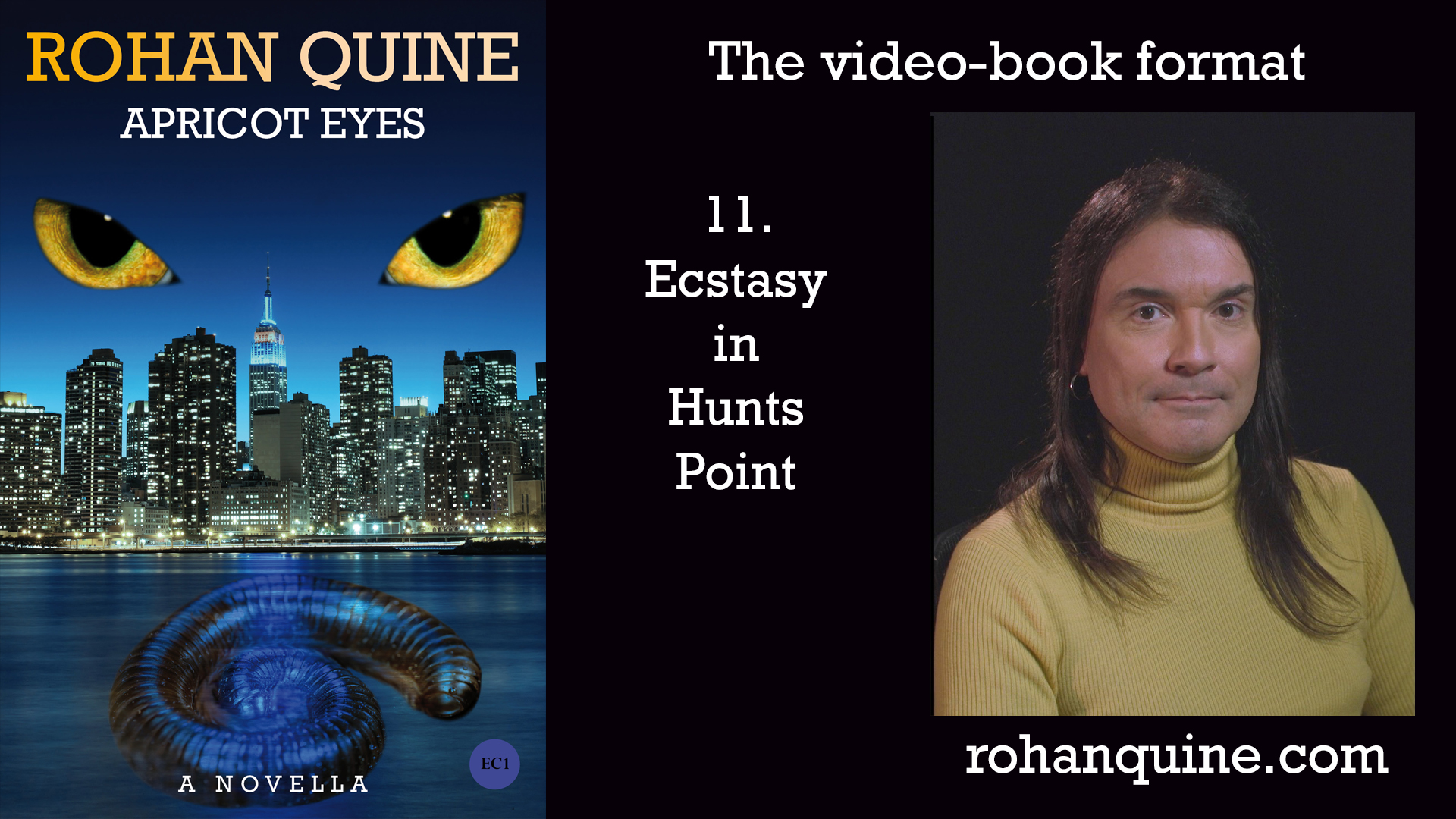 APRICOT EYES by Rohan Quine - video-book format - chapter 11
