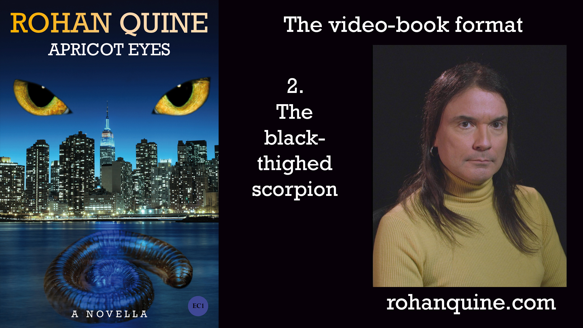 APRICOT EYES by Rohan Quine - video-book format - chapter 2